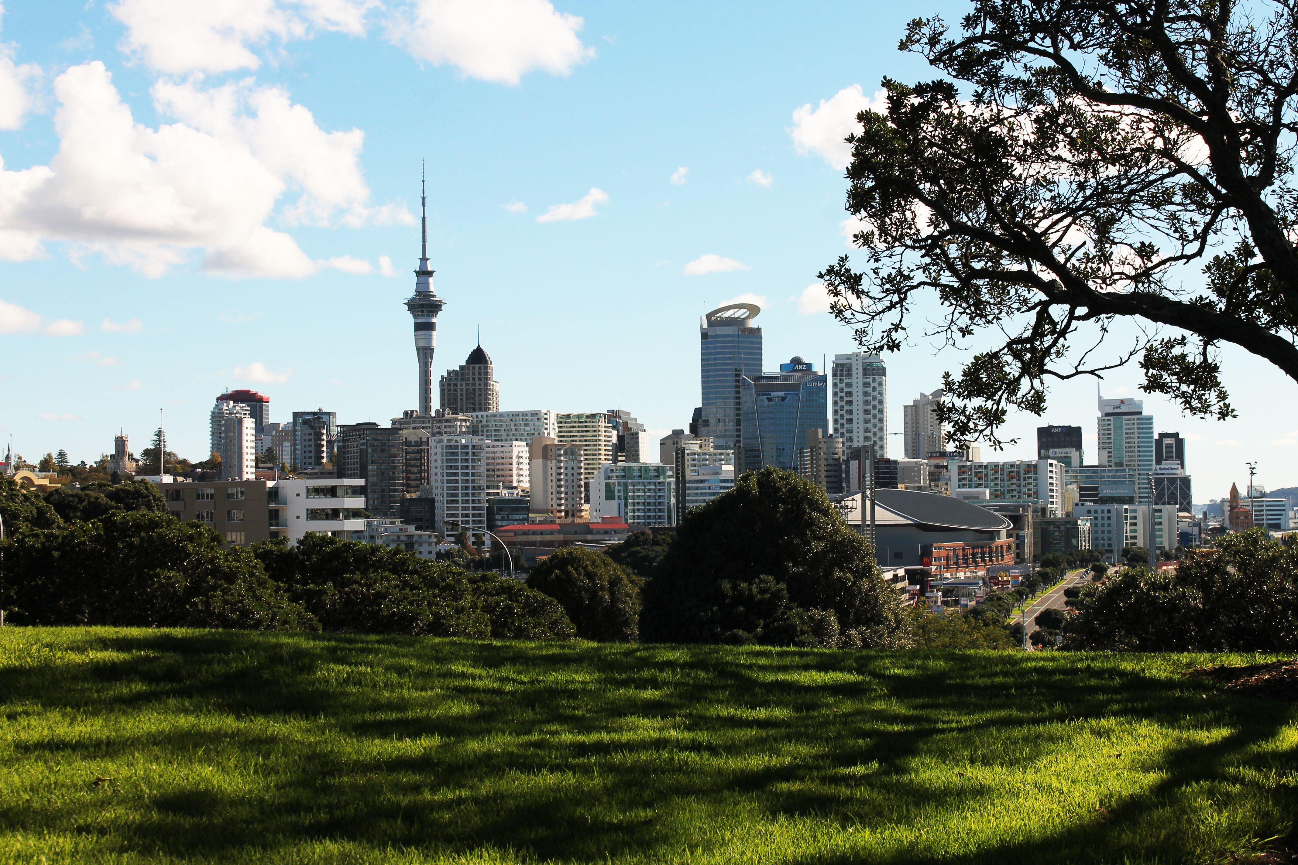 New Zealand Immigration Consultants and Expert Immigration Advisor located in Auckland
